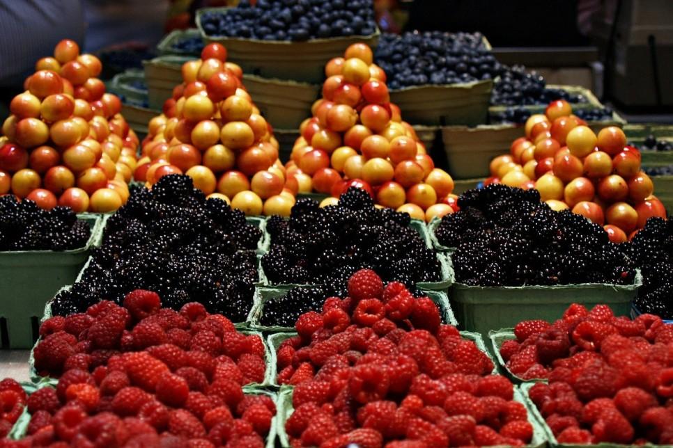 owoce-145